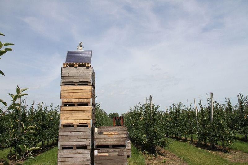 Fruit – Agrilaser Autonomic 1